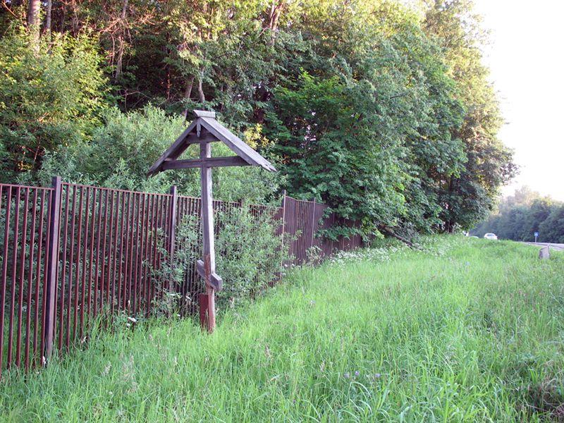 Крест в Рязанцах, фото 25.06.10